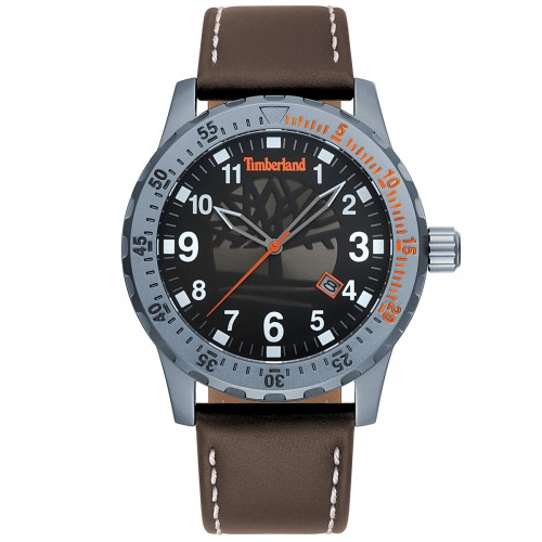 TIMBERLAND Clarksburg Silver case with Brown Leather Strap TBL15473JLU02